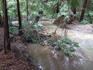 stream in Santa Clara County, California