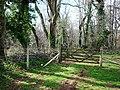 Farm gate and trees, near Manor Farm, Galmpton - geograph.org.uk - 368797.jpg