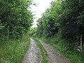 Farm track leading northwards from Carreglwyd - geograph.org.uk - 1392515.jpg