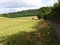 Farmland, Radnage - geograph.org.uk - 884897.jpg