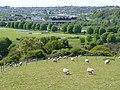 Farmland, leisure land and a cityscape (1) - geograph.org.uk - 1282508.jpg