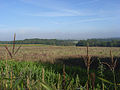 Farmland near Inkpen - geograph.org.uk - 243468.jpg