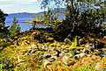 Fjellskålneset - øvre gravrøys sett utover mot Klungerholmen og Osterfjorden.jpg