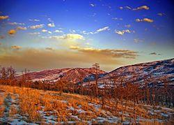 Flickr - Nicholas T - Rouge.jpg