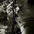 Flickr - fusion-of-horizons - Stavropoleos (34).jpg
