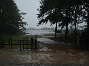 Flooded pony corral (6094144906)
