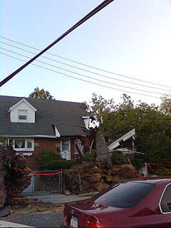 Damage to a home in Flushing caused by a large fallen tree.