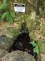 Fontaine Saint-Michel de Gimel-les-Cascades.JPG