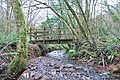 Footbridge in Scadson Woods - geograph.org.uk - 1083770.jpg