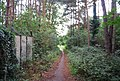 Footpath, Powder Mills - geograph.org.uk - 1391849.jpg