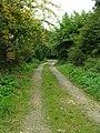 Footpath - Bruntcliffe Road - geograph.org.uk - 1492370.jpg