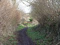 Footpath end - geograph.org.uk - 318572.jpg