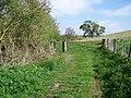 Footpath near Old Dilton - geograph.org.uk - 1282743.jpg