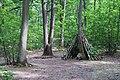 Forêt domaniale de Bois-d'Arcy 56.jpg