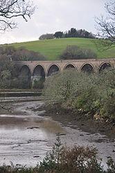 Forder viaduct (9383).jpg