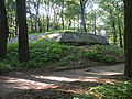 Forest Academy bunker 2.jpg