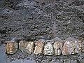Fort Payne Formation over Rockford Limestone (Lower Mississippian; Burkesville West Rt. 90 roadcut, Kentucky, USA) 2 (28543005248).jpg
