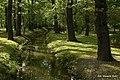 Fosa w Parku Szczytnickim - panoramio (1).jpg