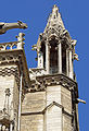 France-000270 - Gargoyles Everywhere (14731462423).jpg
