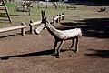 Garajonay park horse A.jpg