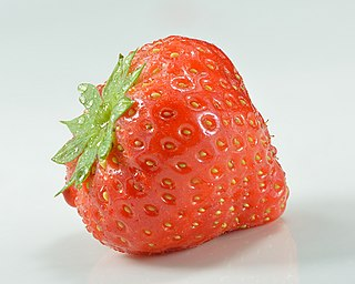 Strawberry Edible fruit