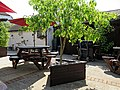 Garnon Bushes pub patio tree planter, Coopersale, Epping, Essex, England 02.jpg