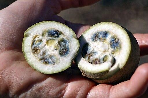 jagua fruta