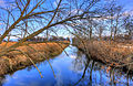 Gfp-illinois-beach-state-park-stream.jpg