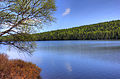 Gfp-michigan-fort-wilkens-state-park-scenic-lake-photo.jpg