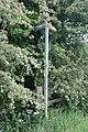 Gibbet Lane, Old Footpath sign to Cotesbach - geograph.org.uk - 1586116.jpg