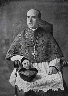 Giovanni Tacci Porcelli