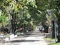 Gliwice - panoramio (109).jpg