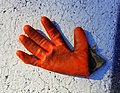 Glove in road - Arlington, MA - 20200925 093725.jpg