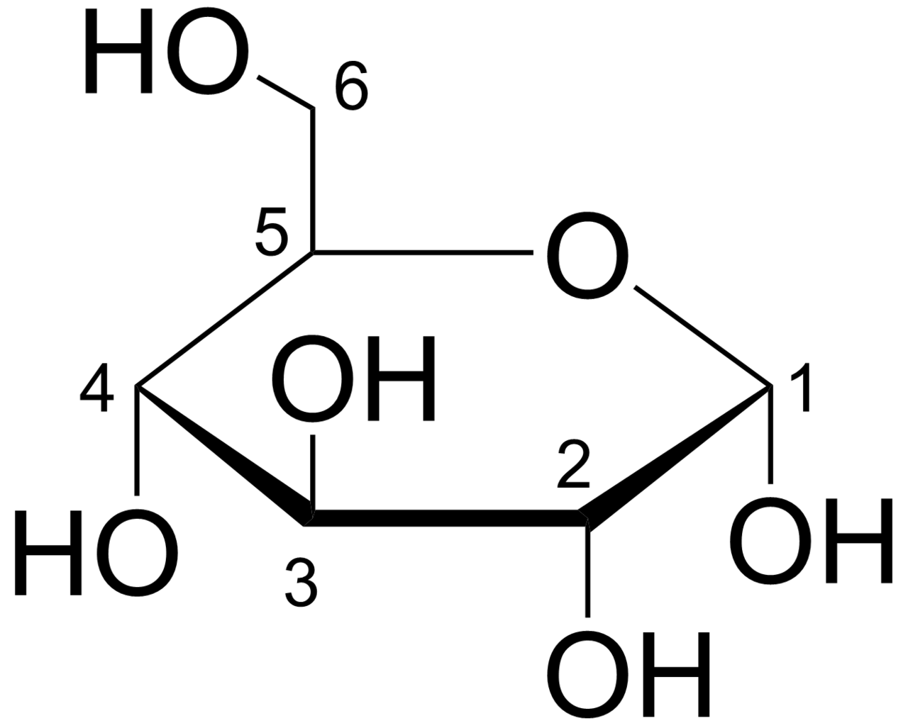 File:Glucose Haworth.png - Wikimedia Commons