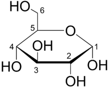 haworth projection Carbohydrates - cyclic structures and anomers carbohydrates - absolute configuration and you can see in the haworth projection that this last carbon points up.