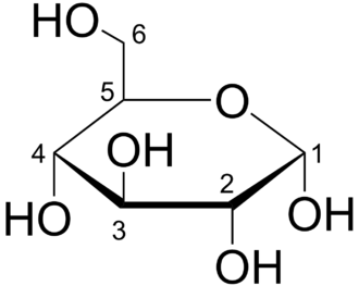 Organic compounds such as glucose are vital to living organisms Glucose Haworth.png
