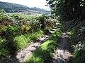 Glyndwr's Way - geograph.org.uk - 970164.jpg
