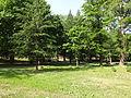 Gradski Park-Skopje (107).JPG