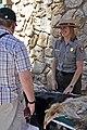 Grand Canyon Celebrate Wildlife Day 2011 0584 (5707467252).jpg