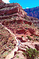 Grand Canyon National Park GRCA9858.jpg