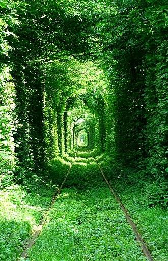 Klevan - Tunnel of Love near Klevan