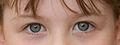Grey eye.jpg