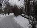 Großer Garten, Dresden in winter (1120).jpg