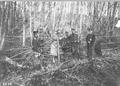 Händeschütteln an der elsässischen Grenze - CH-BAR - 3238404.tif