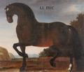 Hästporträtt från cirka 1650 - Skoklosters slott - 95253.tif
