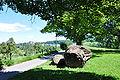 Hönggerberg - Findlingsgarten Kappenbühl 2010-08-01 14-44-14.JPG