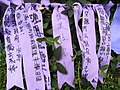 HK Admiralty Tamar Square Ribbon message 043 Purple 9-Sept-2012.JPG