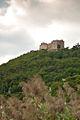 Hambacher Schloss (früher auch Kestenburg bzw. Maxburg).jpg