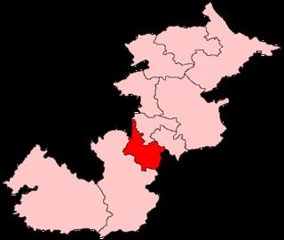 Hamilton South (Scottish Parliament constituency)