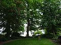 Haus Koekkoek Kleve Garten PM15 05.JPG